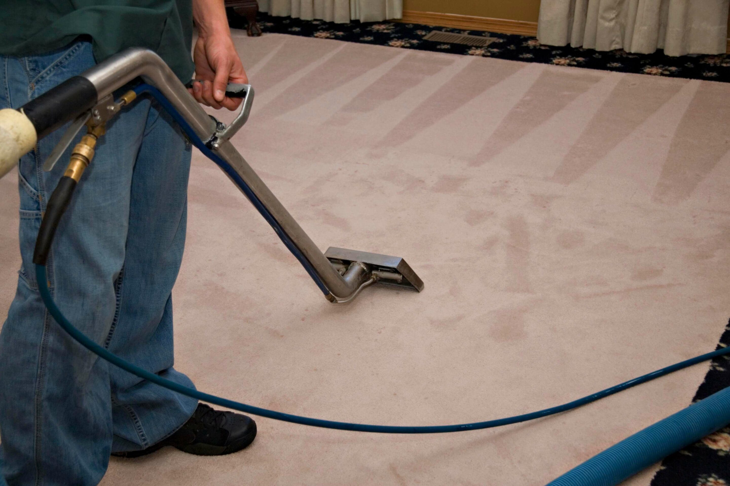 Cape Town Carpet Cleaners Steam Carpet Cleaning Johannesburg carpet cleaners