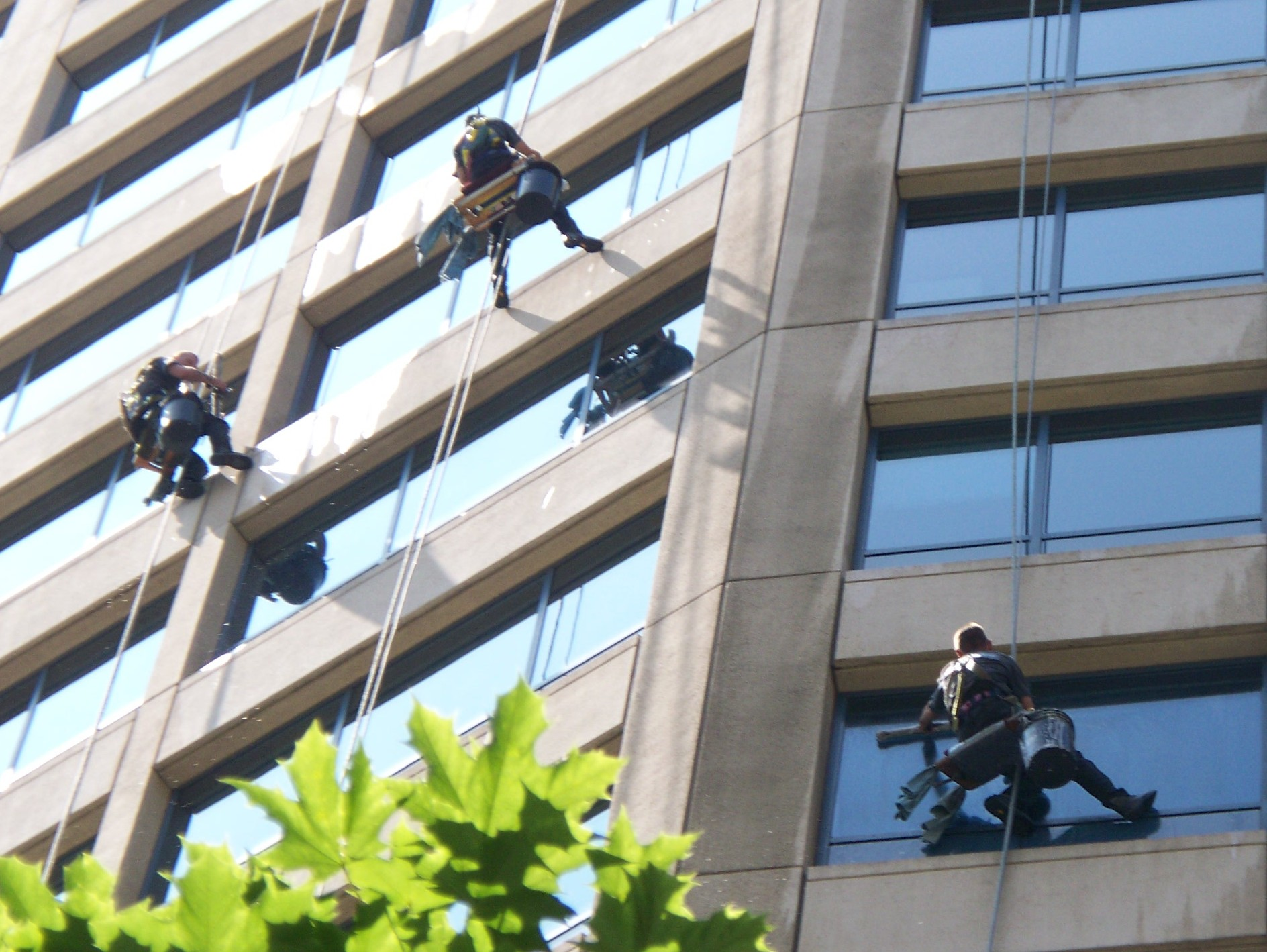 Window Cleaning Services Extreme Cleaning